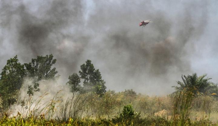 Foto Berita Tujuh Titik Api Terdeteksi di Riau