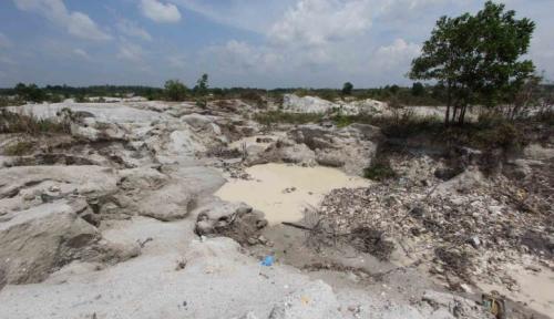 Foto Walhi Sentil Grup Ciputra: Akibat Proyek Reklamasi, Pesisir Pantai Rusak Parah