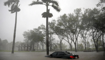 Foto Penjualan Mobil di Texas Meroket Pascabadai Harvey