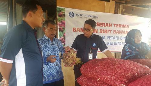 Foto BI Serahkan 1,15 Ton Bibit Bawang Merah untuk Klaster Balikpapan