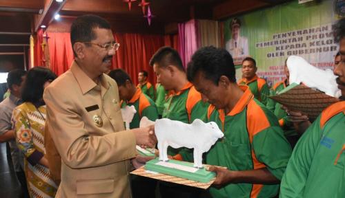 Foto Tingkatkan Konsumsi Daging, Gubsu Kirim Bantuan ke Peternak Sumut