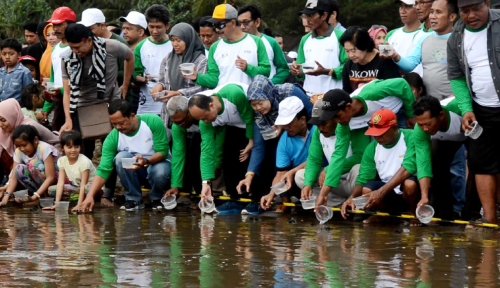 Foto PJB Lepas Ratusan Tukik di Pantai Serang Blitar