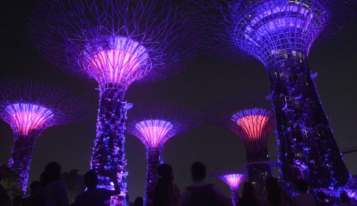 Tak Bayar GST, Agen Asuransi Singapura Didenda Dua Kali Lipat - Warta Ekonomi