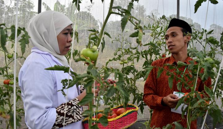Foto Berita Khofifah-Emil Dorong Inovasi Teknologi Pertanian