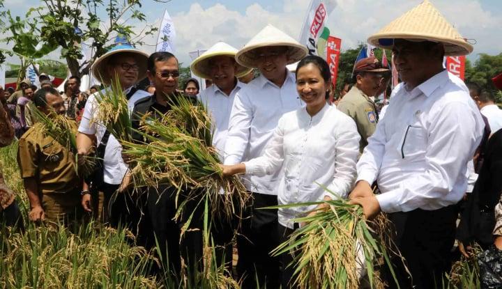 Mentan Kenalkan Asuransi Pertanian di Ciamis - Warta Ekonomi