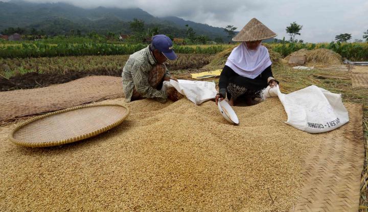 Indeks Ketahanan Pangan Indonesia Meningkat Tajam - Warta Ekonomi