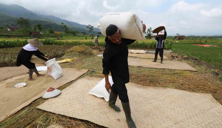 Foto Berita Antisipasi Harga Beras Tinggi, Pemkab Bogor Salurkan 1.000 Kupon Beras