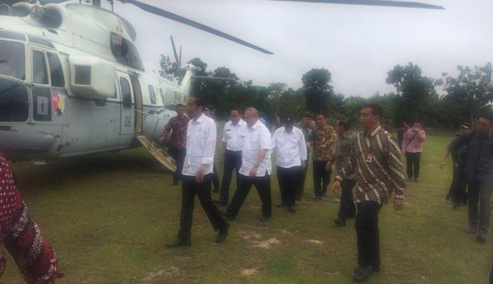 Selain Muba, Jokowi Bakal Lanjutkan Revitalisasi Kebun Sawit di Tiga Provinsi Ini - Warta Ekonomi