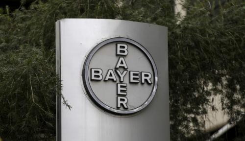 Foto Bayer Digugat Petani Australia