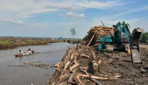 Foto Indonesian Paper Makers Benefit from China Import Ban