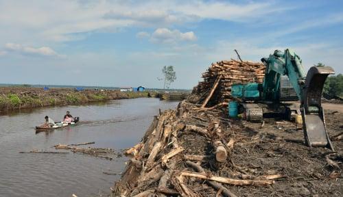 Foto HITI: PP Gambut Hambat Investasi