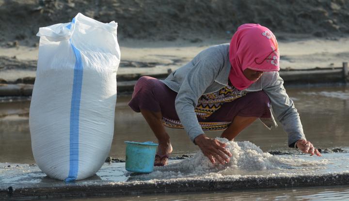 Foto Berita Industri Komitmen Serap Garam Petani 1,43 Juta Ton
