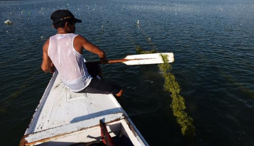 Foto BPBD Tasikmalaya: Kondisi Laut Normal