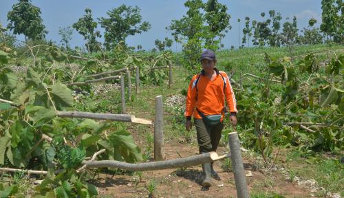 Foto Bikin Film Soal Ekspor Pasir Ilegal, Kamboja Penjarakan Dua Aktivis Lingkungan