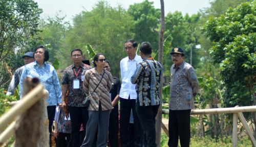 Foto Menteri Siti Ajak Warga Gemar Tanam Pohon