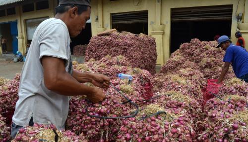 Foto Importasi Bawang Merah Berlabel Bawang Bombai Merusak Pasar