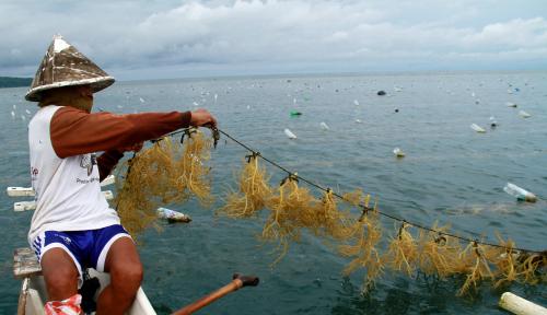 Foto KKP Gandeng SKK Migas Kelola Sumber Daya Laut