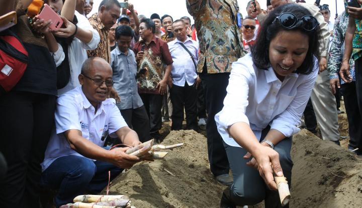 Foto Berita Sambut HUT ke-20 Kementerian BUMN, Menteri Rini Bersih-Bersih Kali Ciliwung