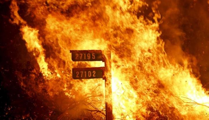 Ledakan Pipa di Meksiko Tewaskan 20 Orang - Warta Ekonomi