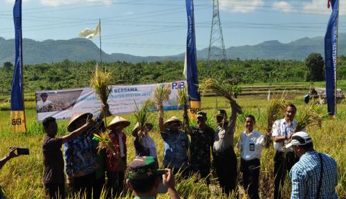 Foto Petani Lebih Sejahtera dengan Pertanian Selaras Alam