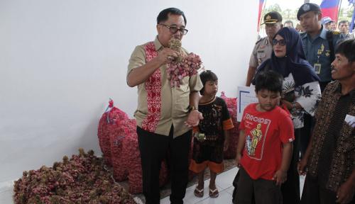 Foto BI: Balikpapan Harus Jadi Sentra Bibit Bawang Merah