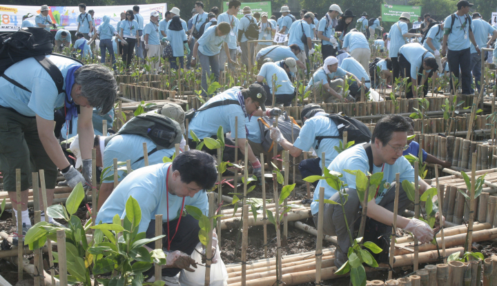 Anak Perusahaan AALI Tanam Mangrove di Sungai Pajalele Sulbar - Warta Ekonomi