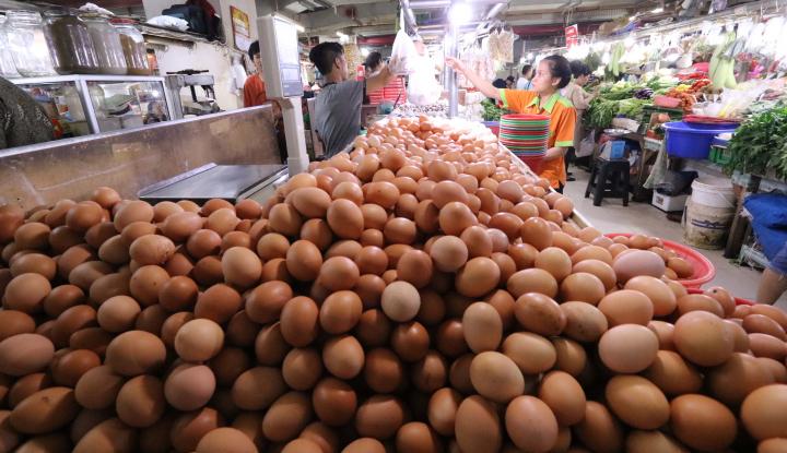 Foto Berita Harga Telur Ayam Ras Mulai Turun