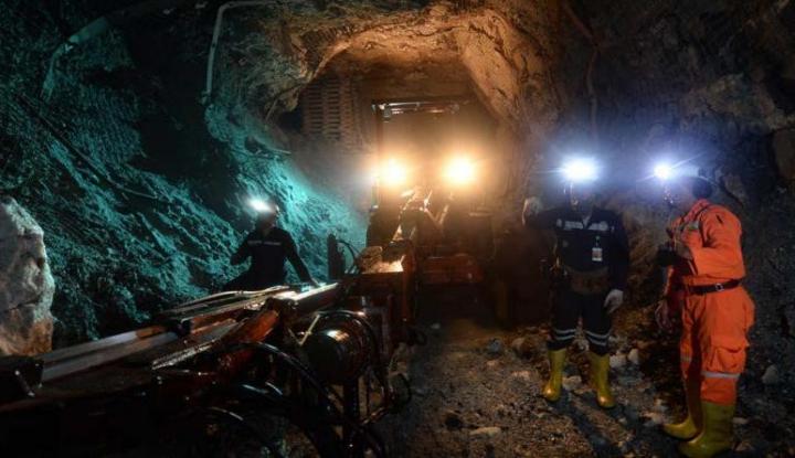 Setoran Pajak PT Vale Indonesia Capai Rp1,3 T - Warta Ekonomi