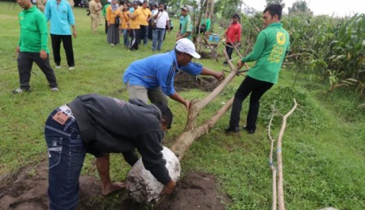 Foto Berita Warga Namang Hijaukan 40 Hektare Lahan Rusak