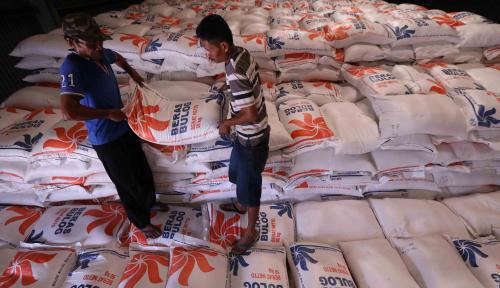 Foto CIPS: Pemerintah Gagal Kelola Distribusi Beras