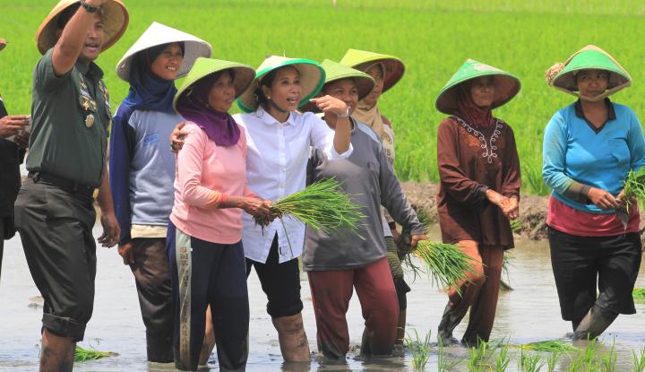 Foto Berita Menteri Rini Beserta Jajaran BUMN Salurkan CSR di Indramayu
