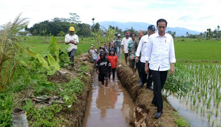 Foto Berita Jokowi Tinjau Program Padat Karya di Ambon