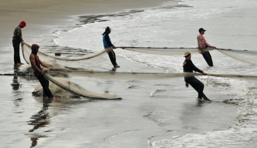 Foto Salurkan Jaring Pengganti Trawl, Pemkab Siapkan Rp1,3 M