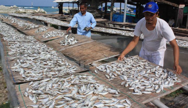 Foto Berita Pelindo IV Dorong Akselerasi Ekspor Ikan dari Tual