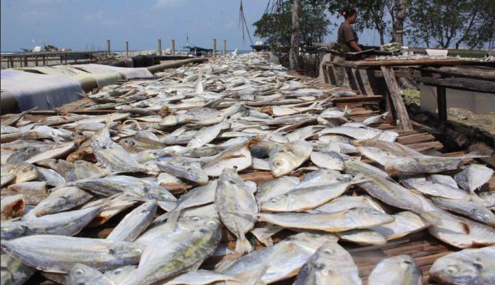 Foto Berita DPRD Kotim Dorong Pemkab Budidayakan Ikan Jelawat