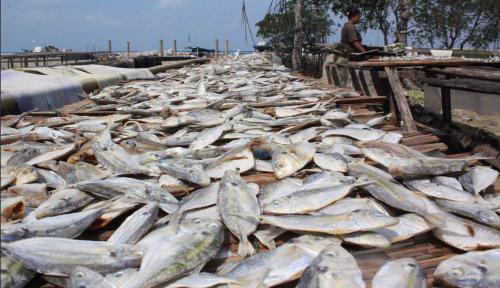 Foto Istri Galih Ginanjar Jadi Tersangka Kasus Ikan Asin?