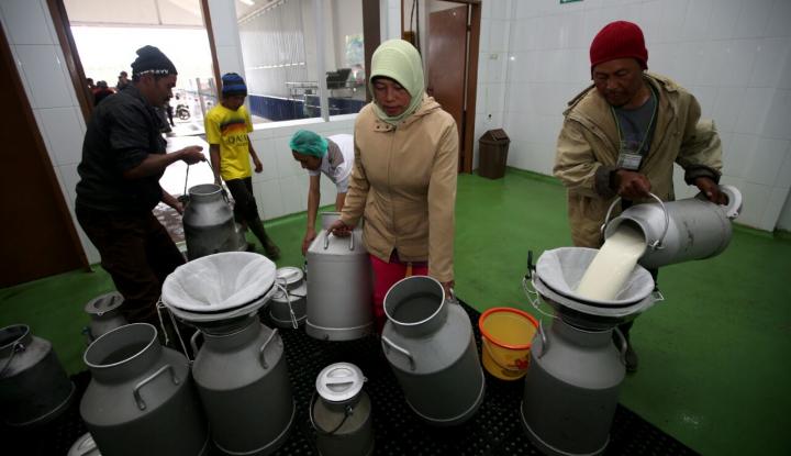 Foto Berita Milk Collection Point Digital Tingkatkan Kualitas Susu Hingga 90 %