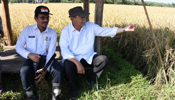 Foto Berita Genjot Produksi Pangan, Jabar Bangun Tujuh Bendungan
