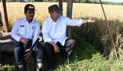 Foto Genjot Produksi Pangan, Jabar Bangun Tujuh Bendungan