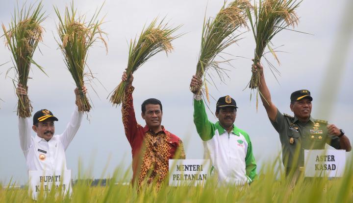 Kinerja Kementan Genjot Ekspor Pertanian, DPD Apresiasi - Warta Ekonomi