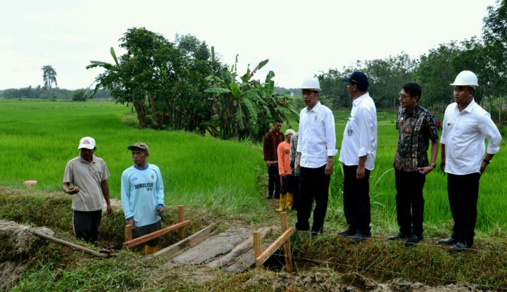 Foto Berita Presiden Tinjau Pelaksanaan Padat Karya Tunai di Dharmasraya