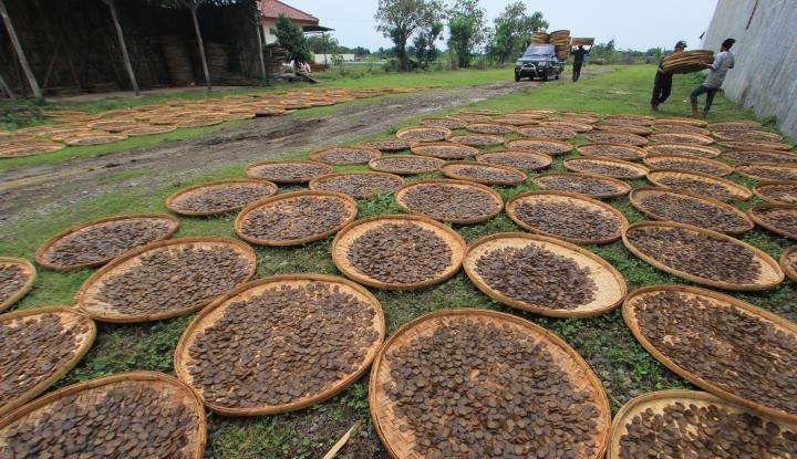 Foto Berita UKM Indonesia Ayun Langkah Menuju Industri 4.0