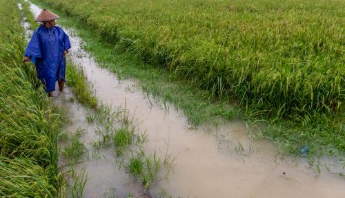 Foto 678 Hektar Sawah Kab Bandung Terendam Banjir