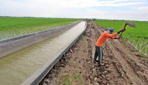 Foto Jual Alat Pertanian secara Online, Riyono Raup Omzet Miliaran