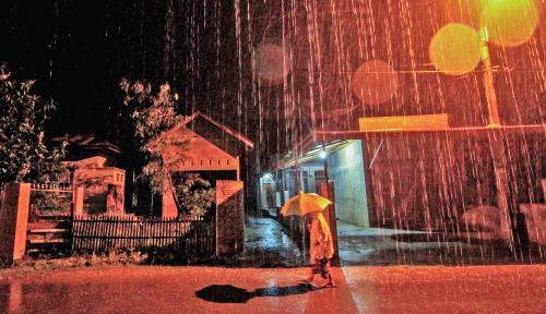 Foto Awal 2019 Kota Bogor Diguyur Hujan