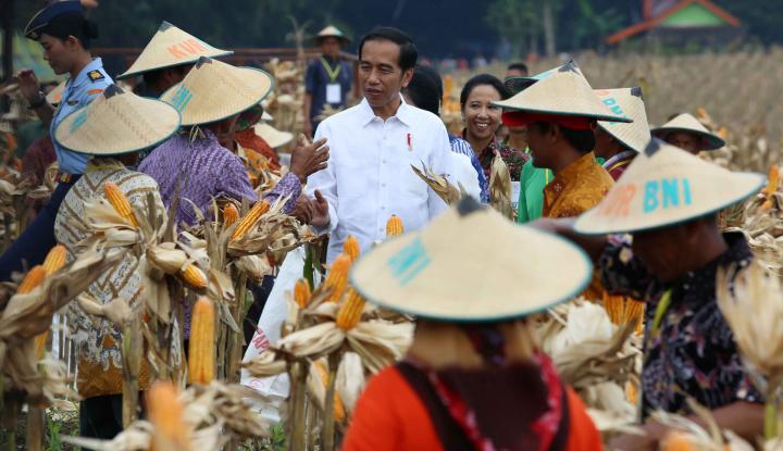 Foto Berita Elektabilitas Harus Sejalan dengan Kinerja, PDIP: Kalau Jokowi Tidak Kaget
