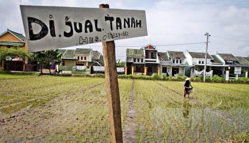 Foto TKN Klaim Impor Pangan Akibat Dari Konversi Lahan Pertanian