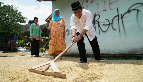 Foto Cawagub PDIP Optimis Jabar Seubeuh Sejahterakan Petani