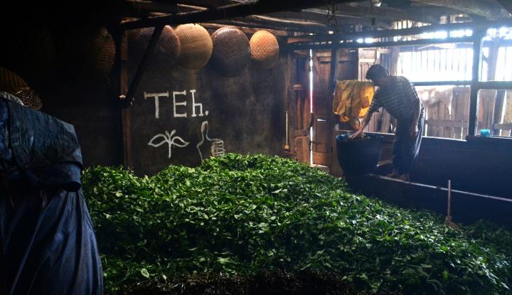 Foto Berita Di Prancis, Teh Indonesia Menangkan Penghargaan International Gourmet Tea