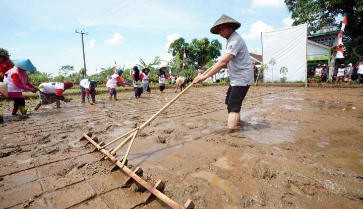 Foto Berita Kang Hasan Janji Akan Stabilkan Harga Pangan